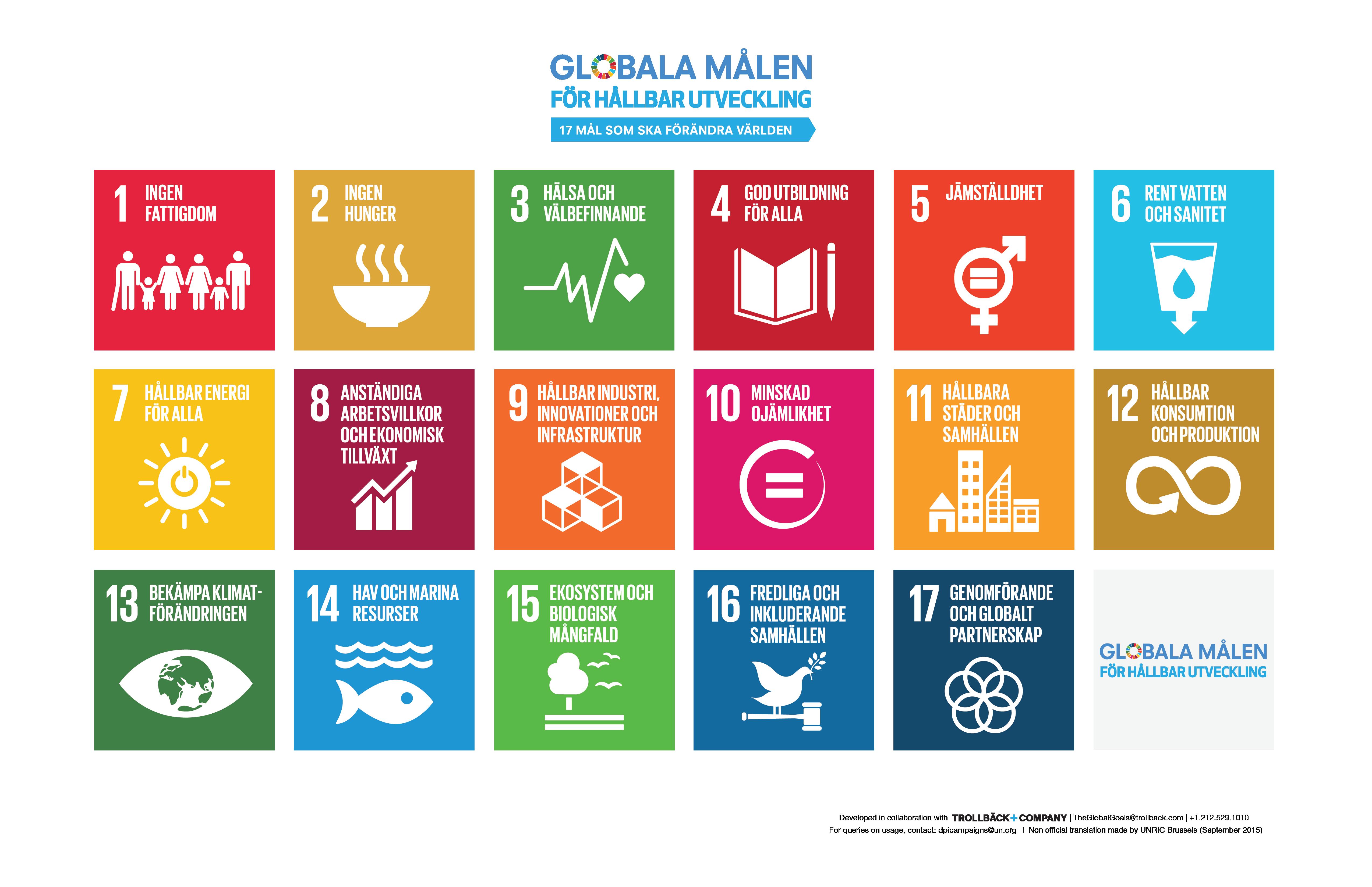 Bild över de globala målen