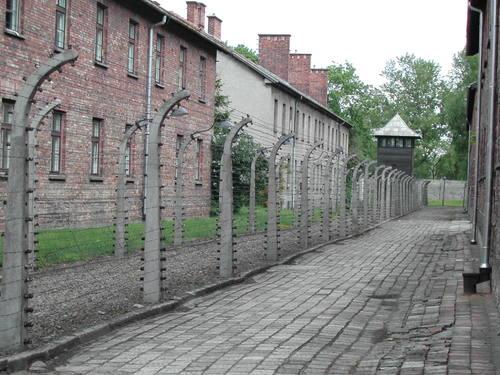 Bild på Auschwitz Birkenau